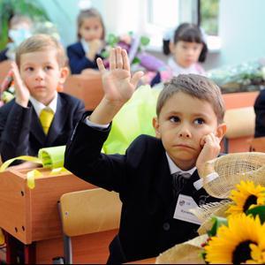 Школы Викулово